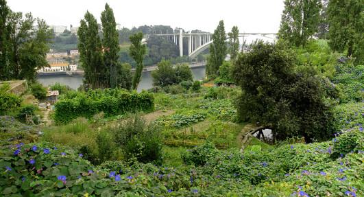 garden-porto